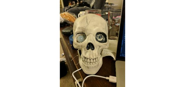 Skeleton Android Things device