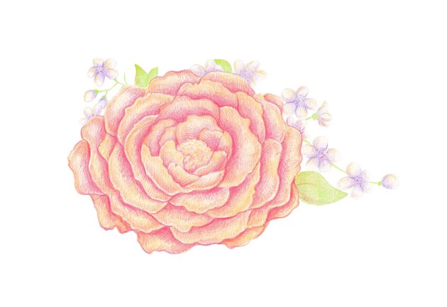 Completing with the rosy strokes