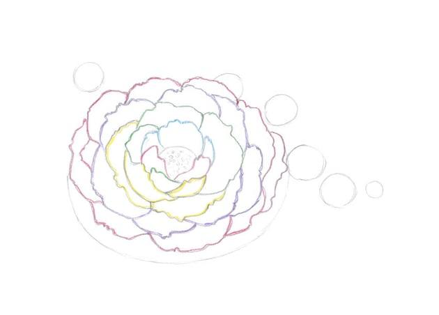 Drawing more petals