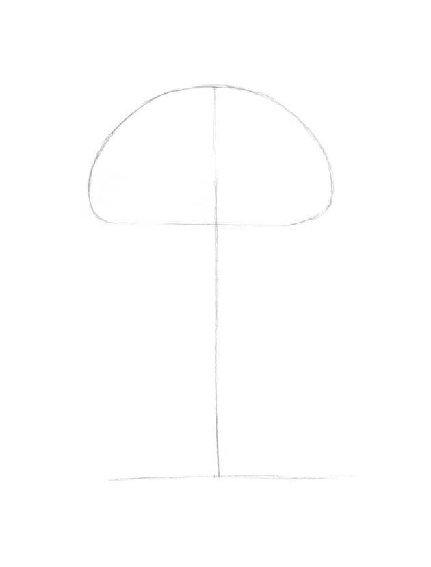 Marking the framework of the mushroom