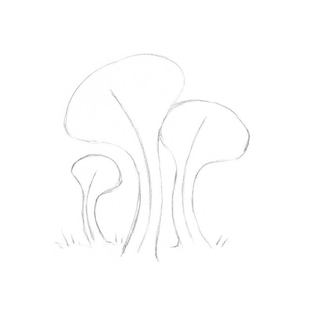 Adding the shapes of the mushrooms