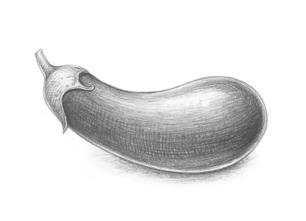 Completing the eggplant drawing