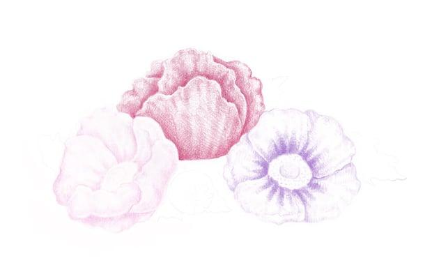 Adding the violet color