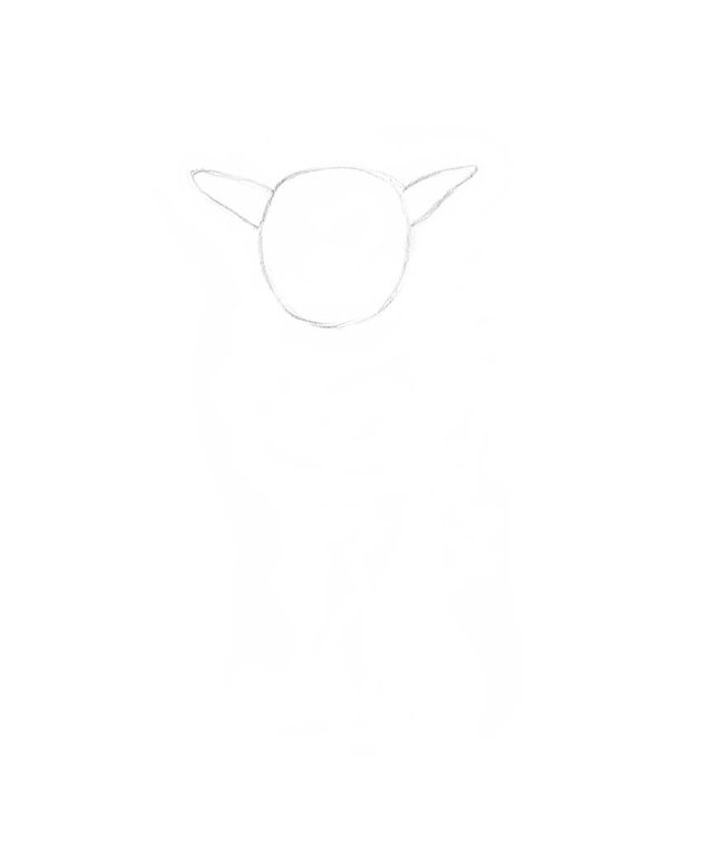 Drawing the shape of the baby goats head with ears