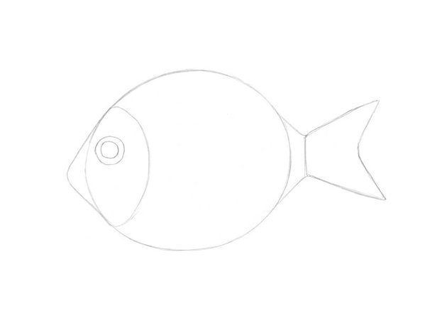 Drawing the tail and the tail fin