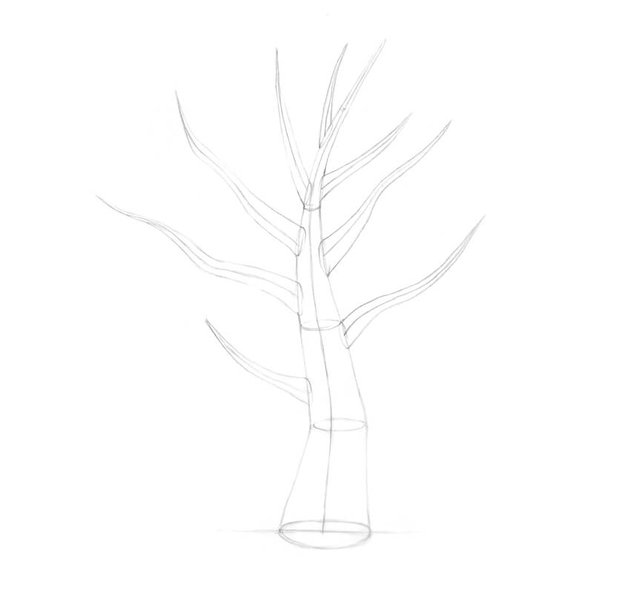 Adding the branches