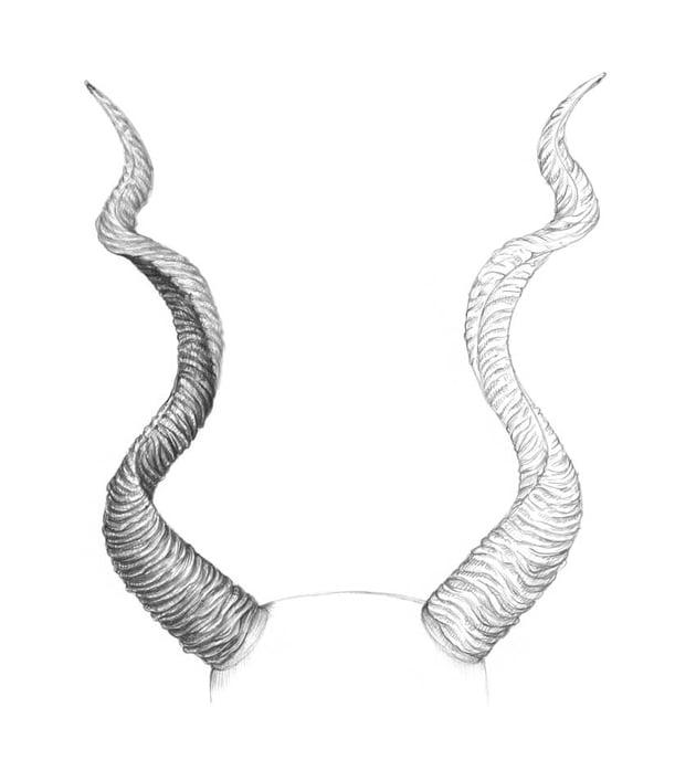 Darkening the inner part of the horn