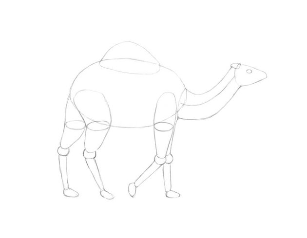 Drawing the hump