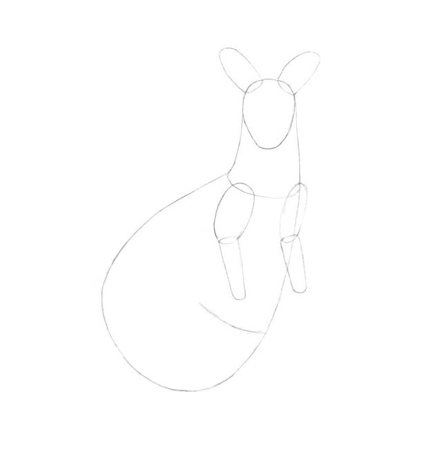 Drawing the upper limbs