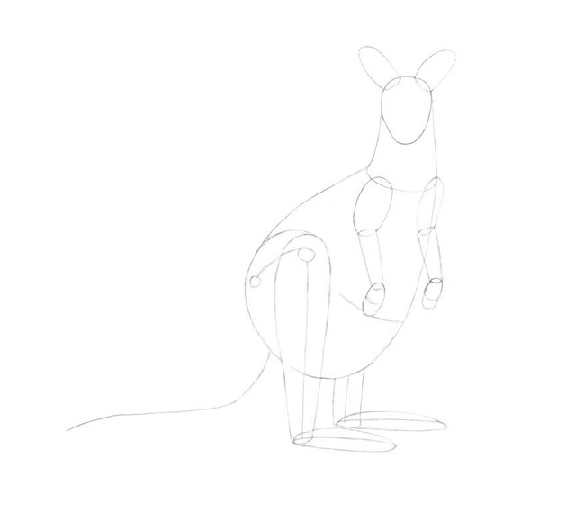 Drawing the core line of the tail and refining the feet