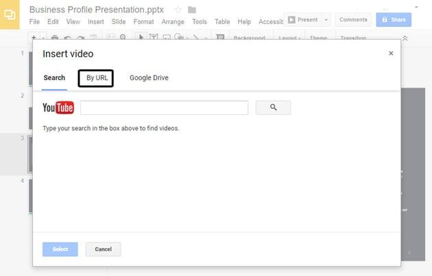 Insert Video Dialog Box