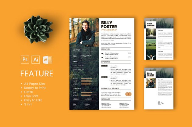 Popular Resume from Envato Elements