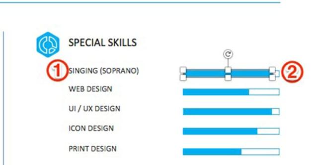 special skills bars