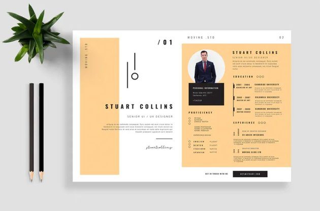 Creative Resume Design Thats a Bit Different