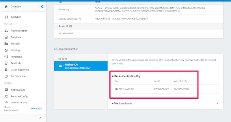 Adding APNs key in Firebase