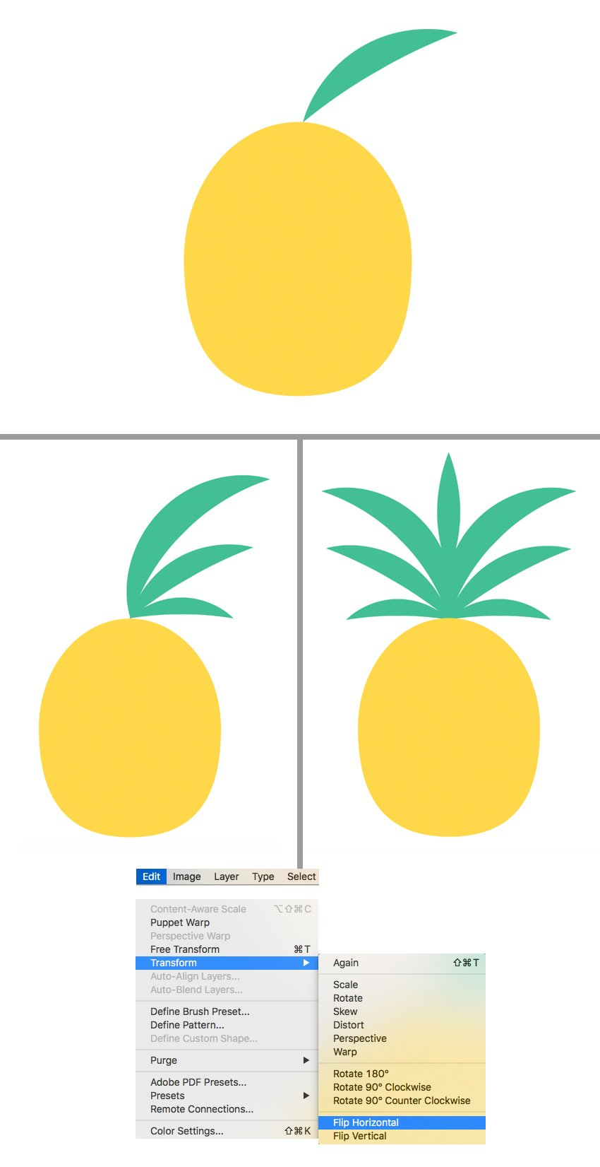 form the crown of the pineapple