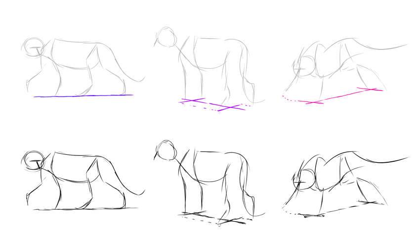 perspective in animal drawing
