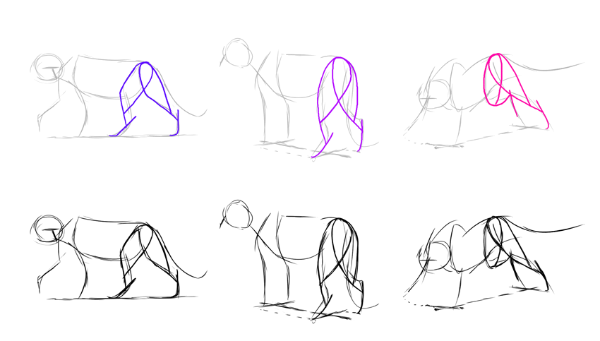 how to draw lion thigh hind legs