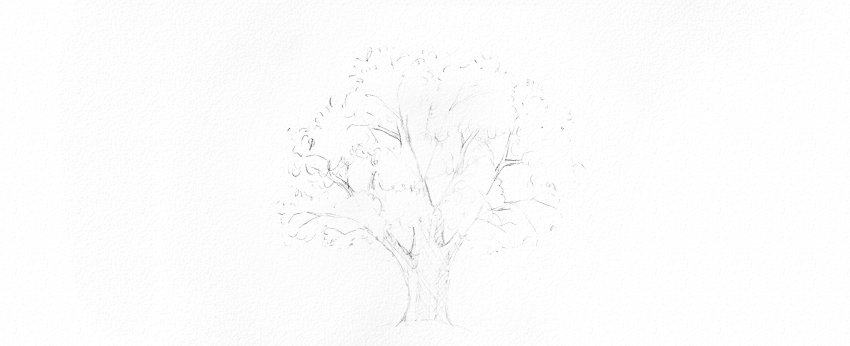 how to shade tree trunk