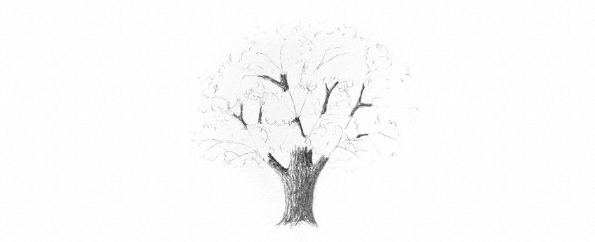 how to shade tree trunk soft pencils