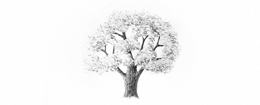 how to shade tree leaves