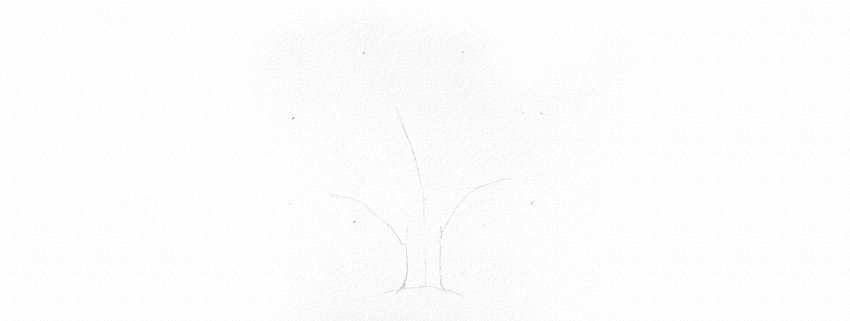 how to draw oak branches