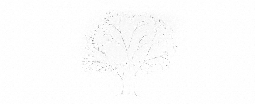 how to draw tree crown leaves