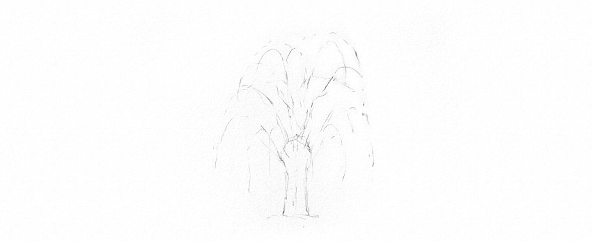 how to draw weeping willow branches
