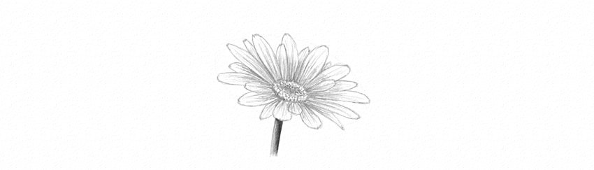 how to shade flower proper contrast