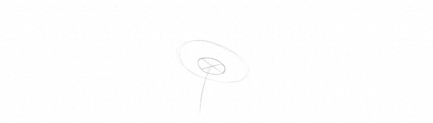 how to draw daisy guide lines