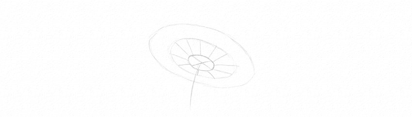 how to draw daisy petals lines
