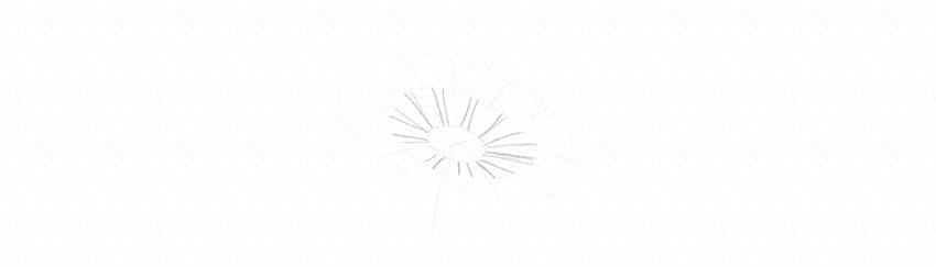 how to draw daisy petals in perspective short