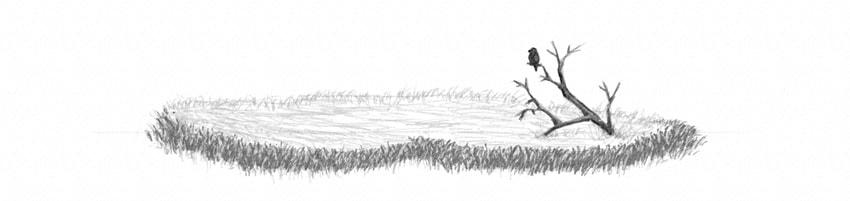 how to make grass field more irregular
