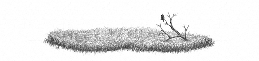 how to shade grass field as a whole