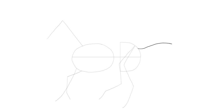 drawing horse tail