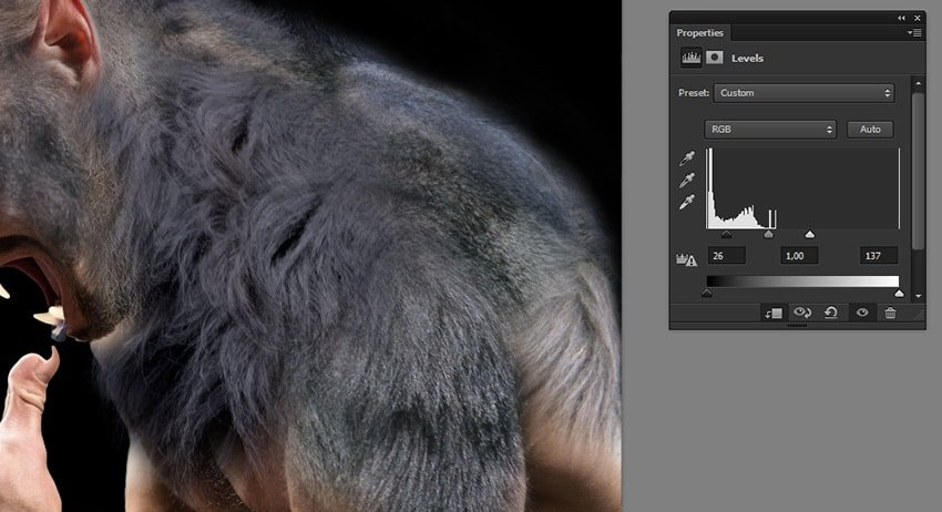 how to change fur contrast in photoshop