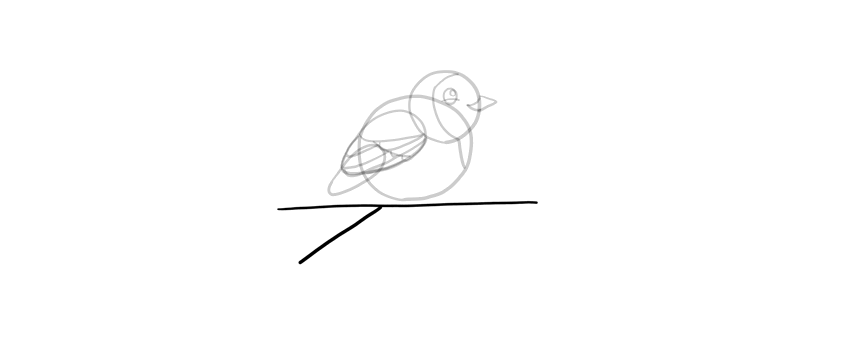 how to draw a branch