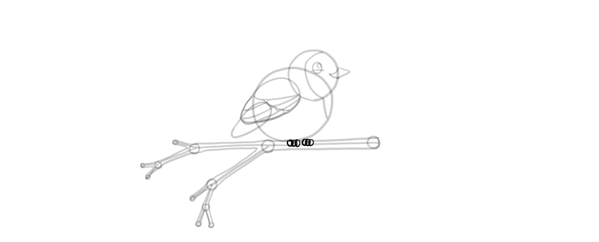 how to draw cute bird feet