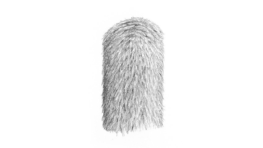how to draw realistic short fur