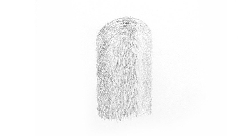 detailed fur shading