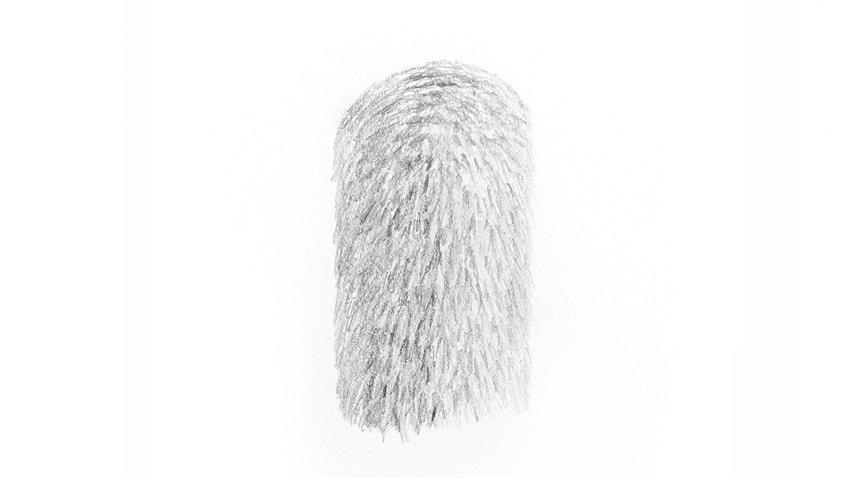 fur contrast