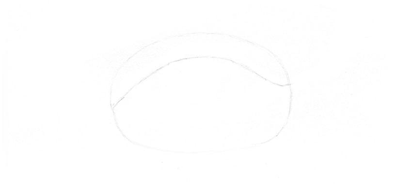 upper eyelid outline