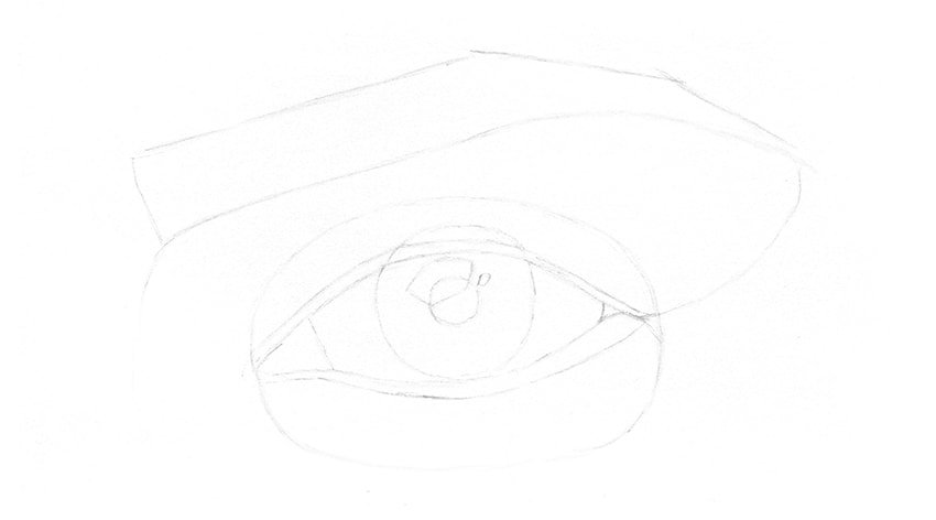 sketch of eyebrow