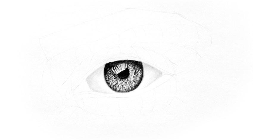 eye blended