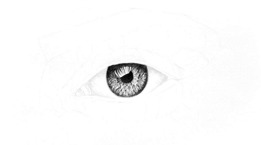 draw corner of the eye