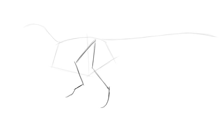 sketch dinosaur legs