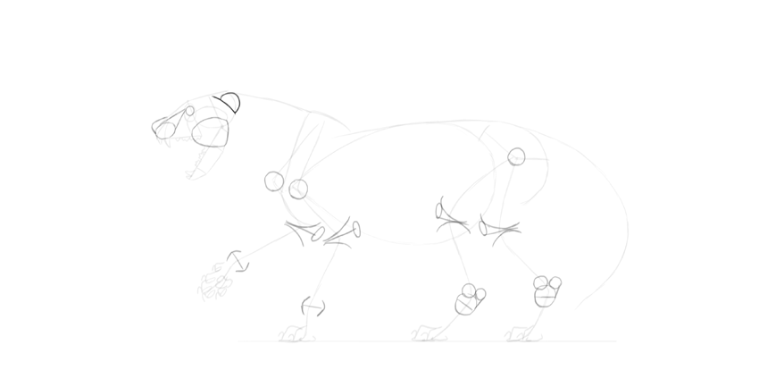 lion ear drawing
