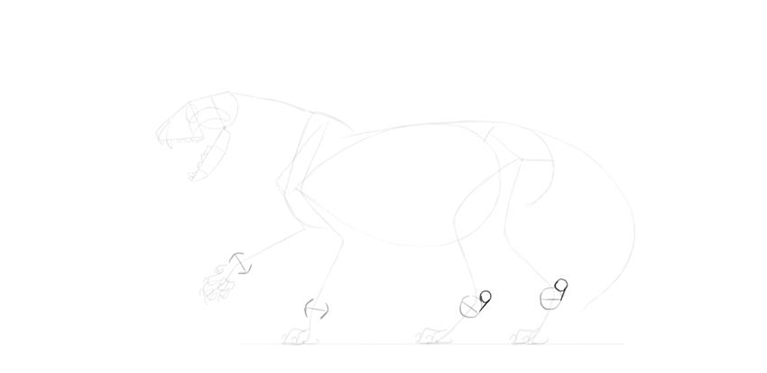 lion heels drawing