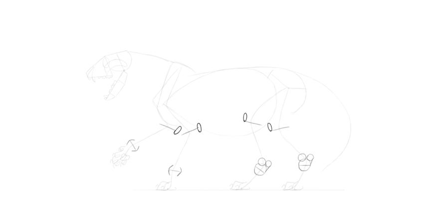 lion knees albows detail drawing
