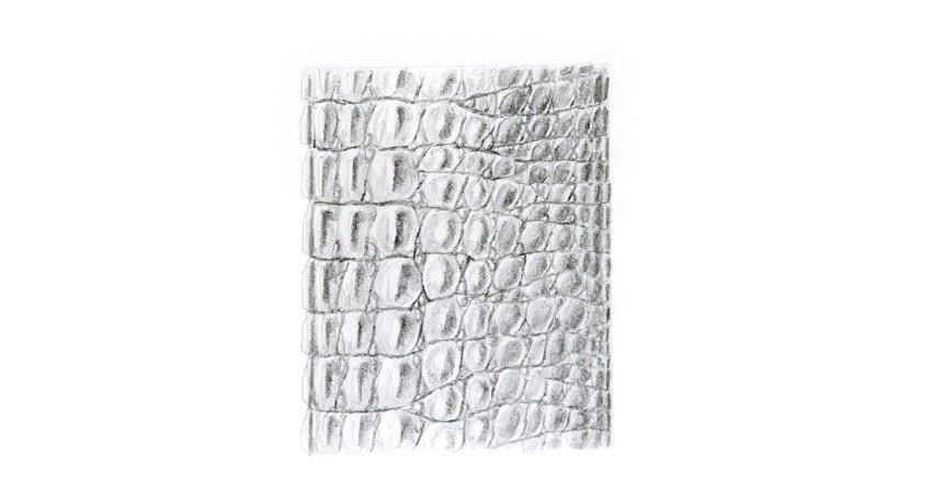 crocodile scales drawing